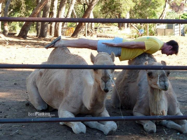 Mimořádně populární fenomén planking