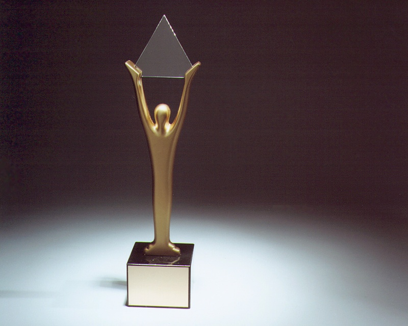 Prestižní cena Stevie Award