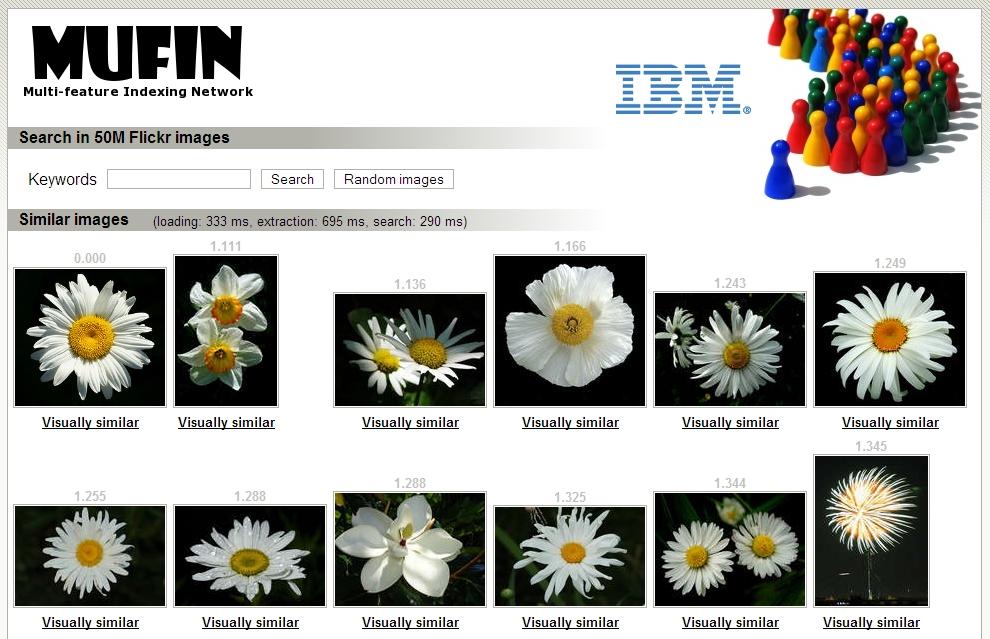 Obrázek 3: Hledání obrázku kopretiny – výsledky získané ve druhém kroku vyhledávání MUFIN