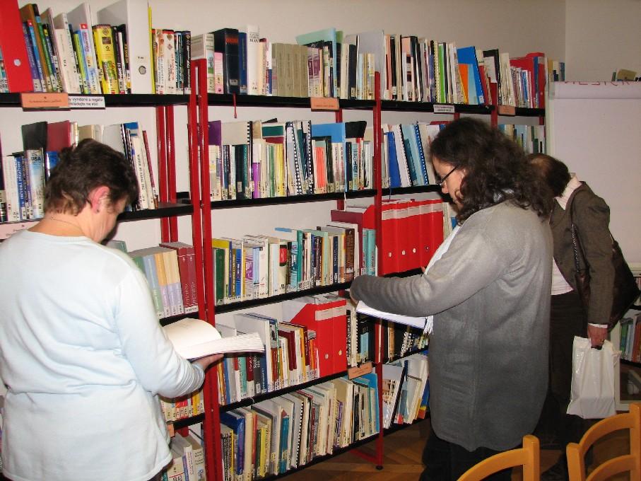 Průzkum knihovního fondu