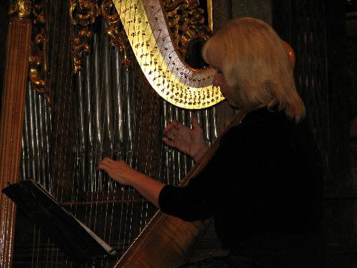 Chvíle napětí před vyhlášením dalších ocenění byly vyplněny poslechem hry na harfu v podání Hany Jouzové