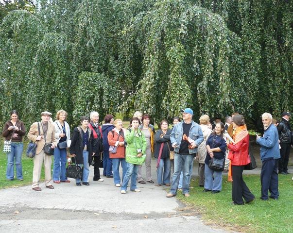 Knihovníci pod památným stromem v Lipníku nad Bečvou