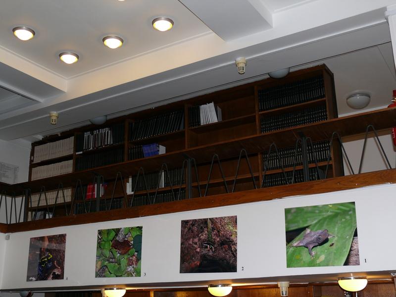 Z interiéru SVI