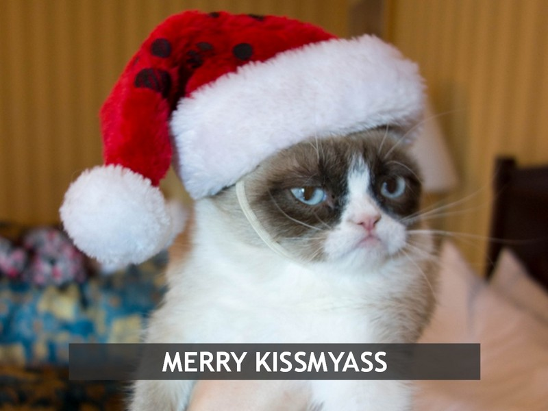 Grumpy Cat mem