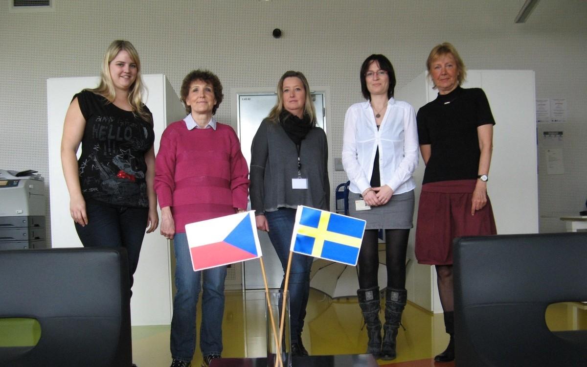 Česko-švédský ILL team