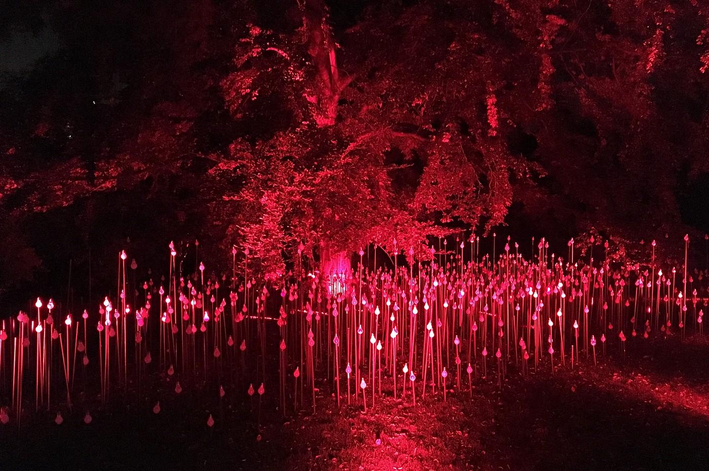 Lights Sowers ve Vojanových sadech